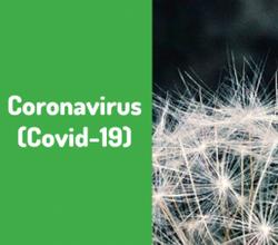 Des mesures supplémentaires pour renforcer la double stratégie de lutte contre le rebond du Coronavirus