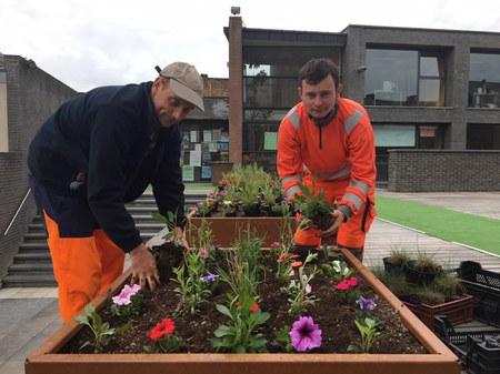 De nouveaux bacs à fleurs pour embellir le centre