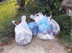 Grand nettoyage : Belle participation pour encore trop de déchets