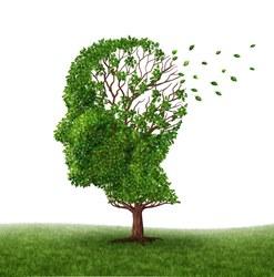 Zoom sur l'asbl Info Alzheimer Frasnes-lez-Anvaing