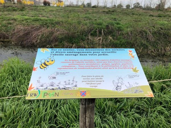 abeilles8.jpg