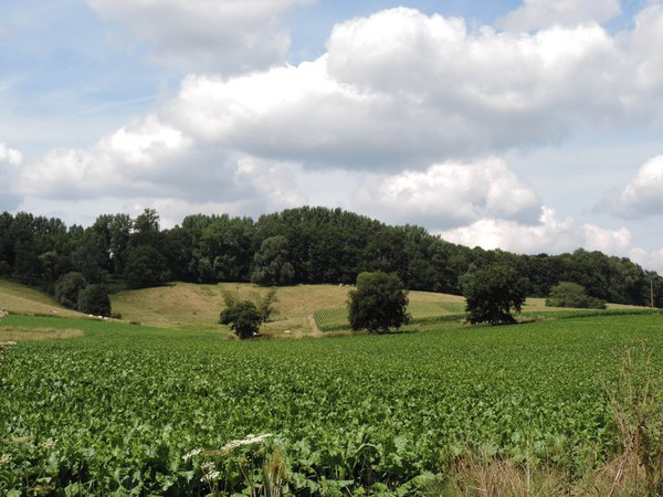 collines du hainaut ok (002).JPG