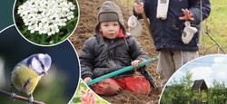 Aménager son jardin en préservant l'environnement