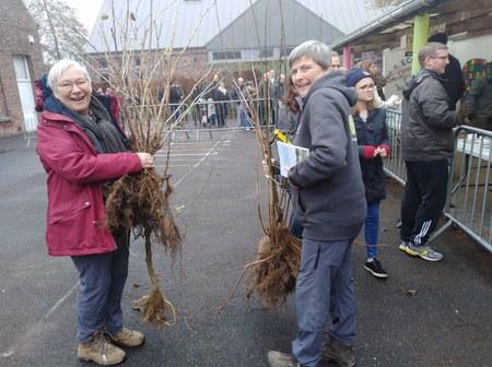 Gros succès pour la distribution d'arbres