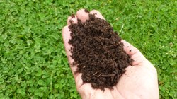Réduire ses déchets et nourrir les sols grâce au compostage !