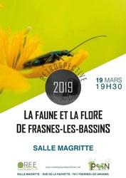 Rétrospective 2019 de la faune et de la flore des Bassins