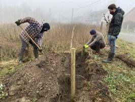 Plantation sur le terrain PCDN