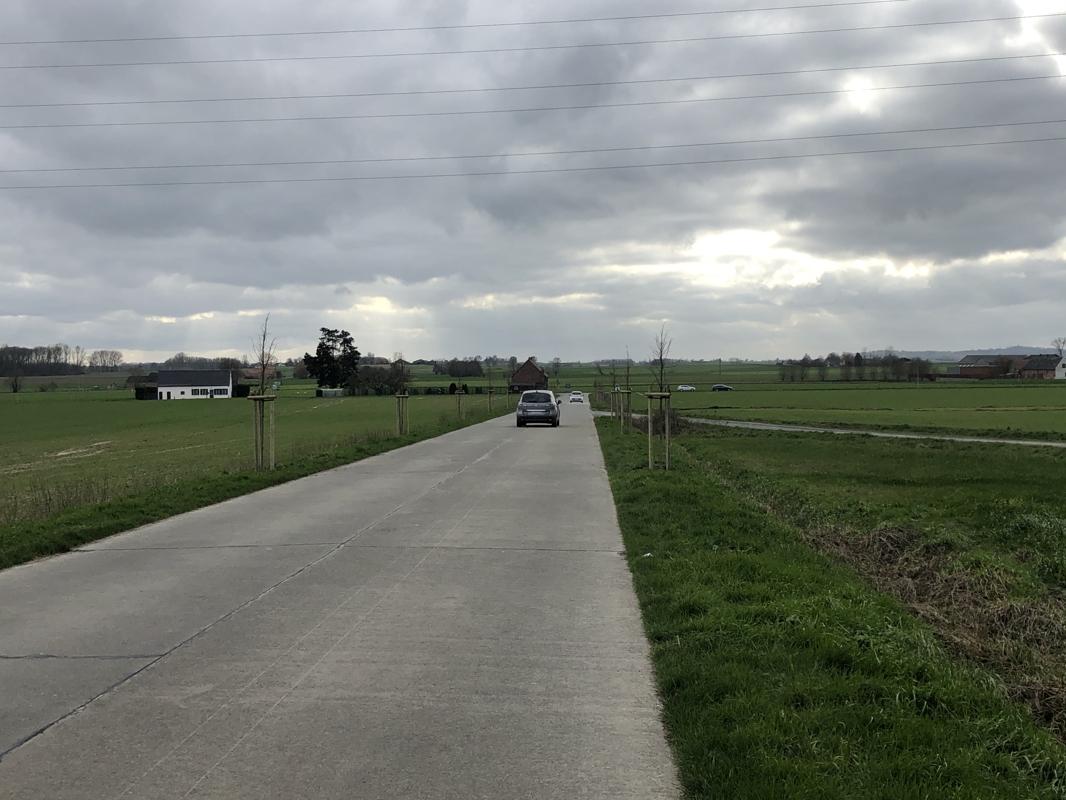 Arc-Ainières - La Marcienne, deux fois 50 m d'arbres en bordure de route