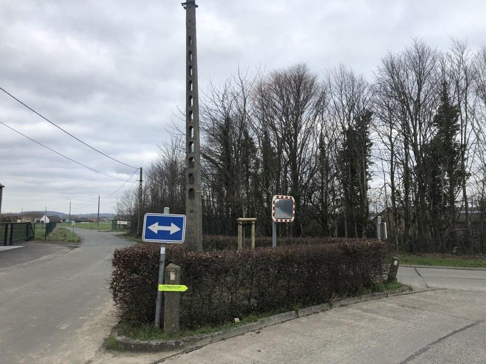 Anvaing - Ilot directionnel à la jonction rue Outre et les Mélins, arbres colonnaires