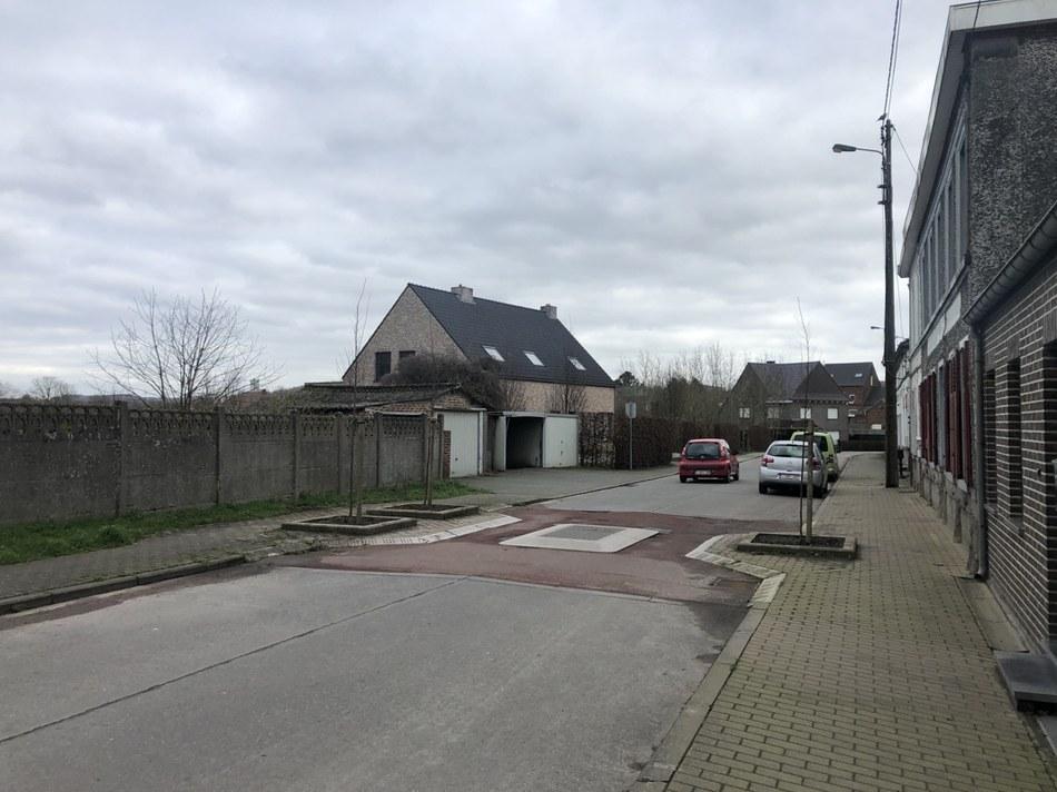 Anvaing - Rue Outre - Arbres colonnaires au niveau des cousins berlinois