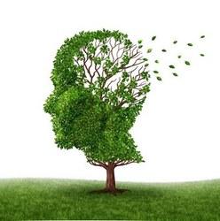 ASBL Info Alzheimer Frasnes-lez-Anvaing